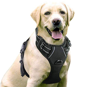 Rabbitgoo-Dog-Harness-No-Pull-Pet-Harness