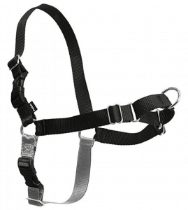 PetSafe Easy Walk Dog Harness to stop pulling