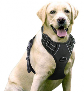 Rabbitgoo Dog Harness No Pull Pet Harness