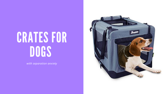 7 Best Crate for Dogs with Separation Anxiety – Review Guide 2020