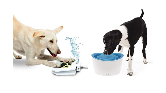 6 Best Dog Water Fountains For Large Dogs – Review 2020