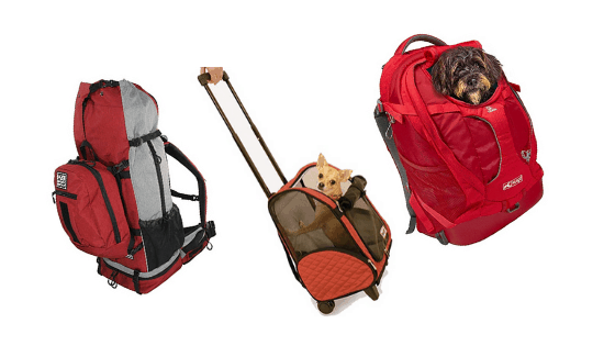 Best Dog backpack carrier bags