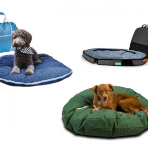 Best Outdoor bed for Dogs