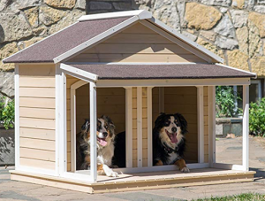 Outdoor wood house for two dogs