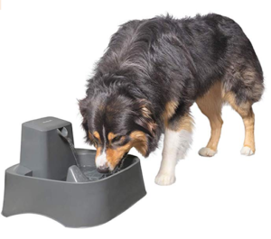 PetSafe Drinkwell 2 Gallon and Big Dog Pet Fountains