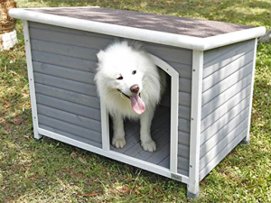 Petsfit outdoor Dog House for medium dogs