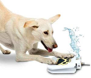 Trio Gato Outdoor Dog Drinking Water Fountain