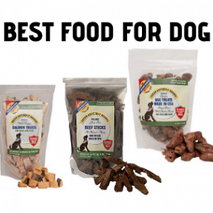 best food that fattens your dog