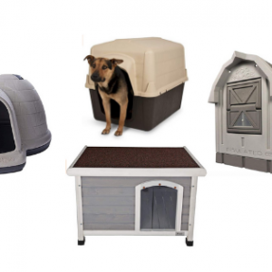best outdoor dog houses for large dogs