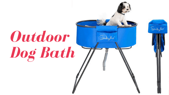 5 Best outdoor dogs bath | March Updated | Review Guide 2021