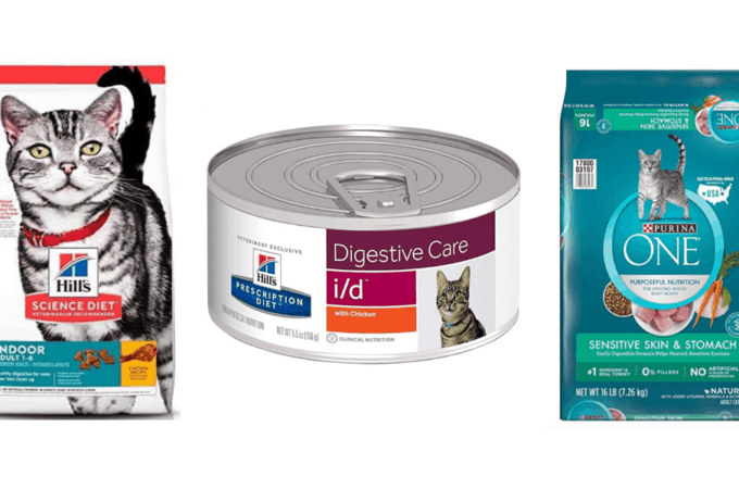 6 Best Cat Food for Diarrhea | Review Guide 2020