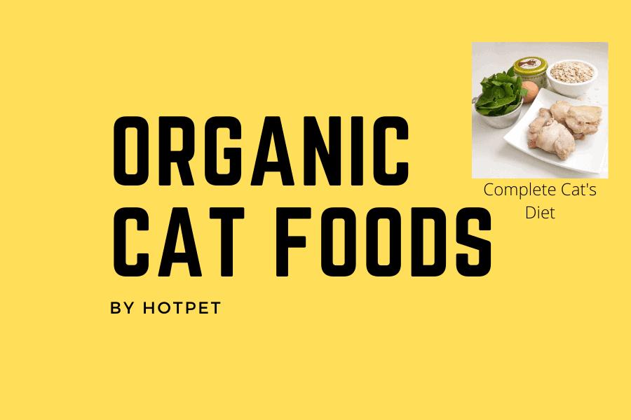Organic Cat Foods